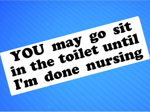Sticker- YOU May Go Sit in the Toilet Until I'm Done Nursing